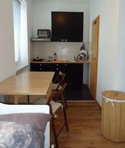 Klein und praktische Wohnung für Pendlern anderen - 韋爾斯(Wels) - 公寓