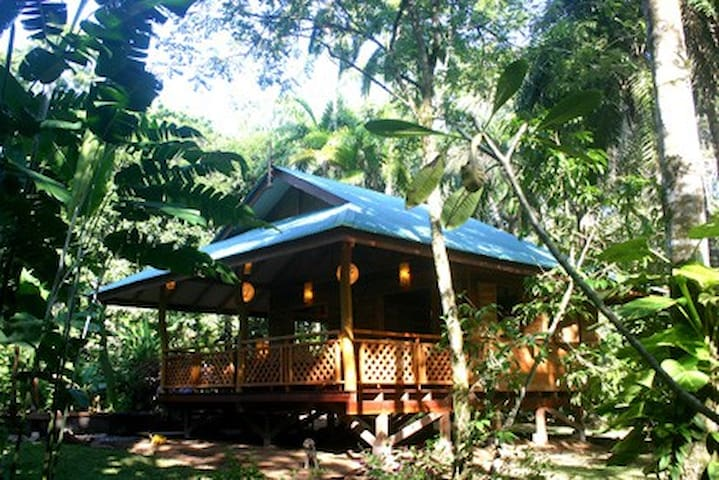 Charming Jungle Bungalow for two/Playa Cocles 5min - Limon - Dom
