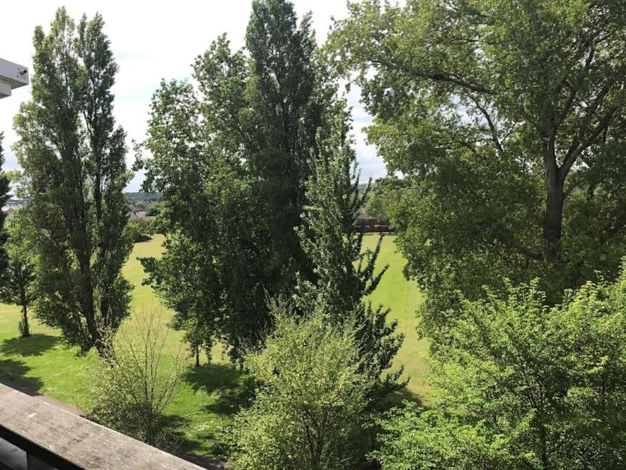 Park from balcony