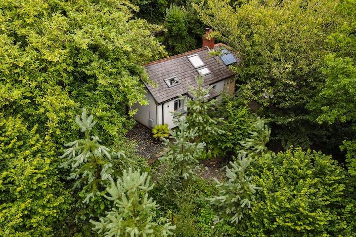 Beili Glas Cottage - Hideaway near nature.