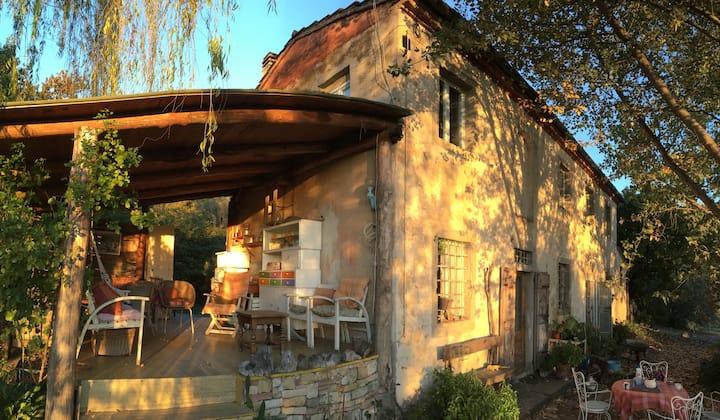 Organic Farm near S.Gimignano
