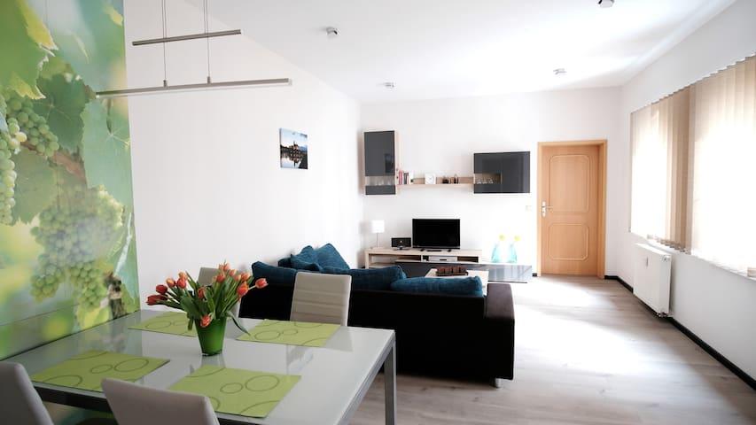 Ferienwohnung/App. für 4 Gäste mit 60m² in Meißen (117036)
