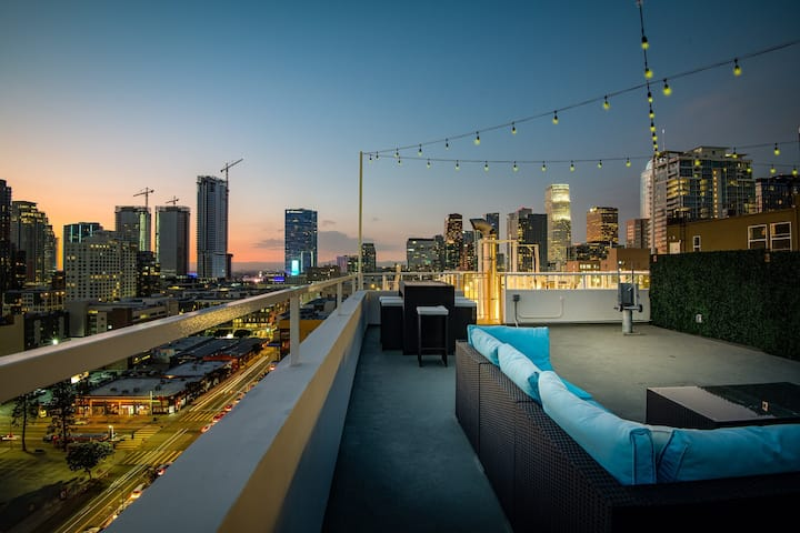 LUXURIOUS-PENTHOUSE 1-$1M-PRIVATE ROOFTOP-DOWNTOWN