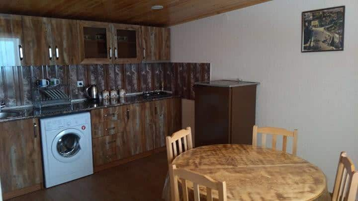 Apartment Blossom, Kazbegi!
