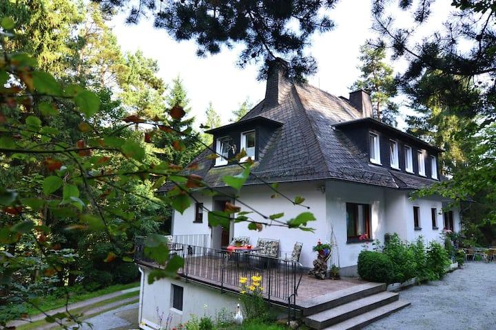 Grote en volledig uitgeruste woning met terras op een rustige plek aan het bos