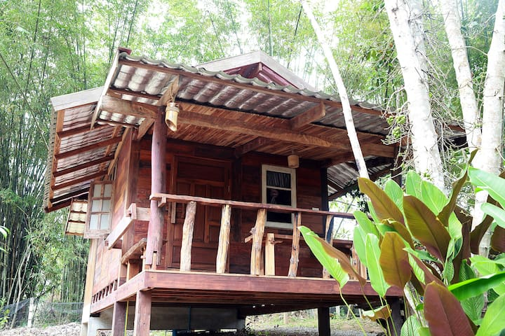 Saranghae Resort Chiang Dao 01.