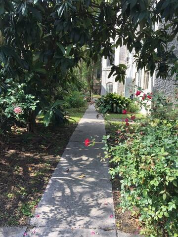 Cozy Quaint Quarters - New Orleans - Apartment