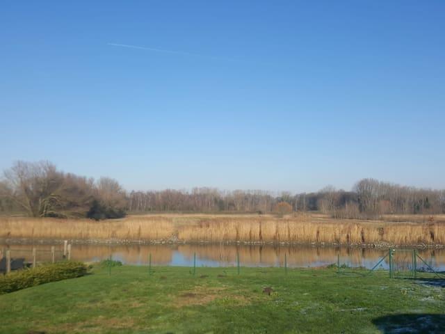 Appartment near the Schelde