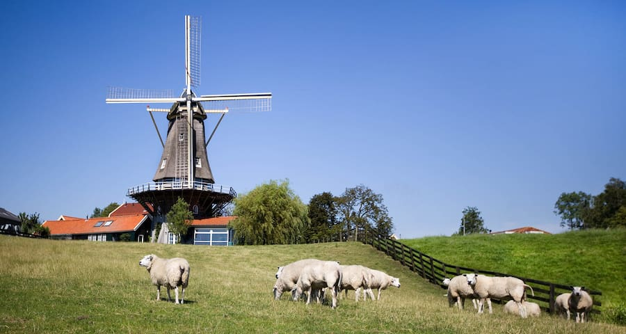 Molen de Morgenster