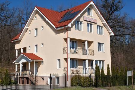 Pensiunea Select - Apartment #3 - Băile Felix - Villa