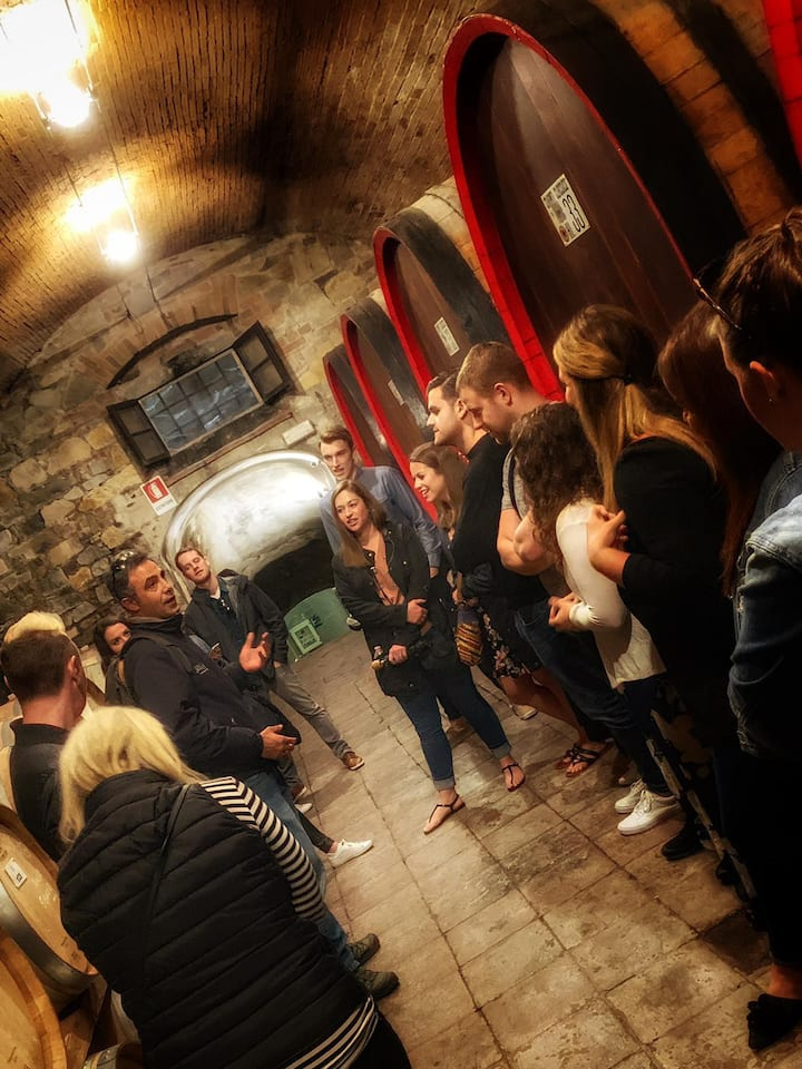 Tour the cellars and understand ageing