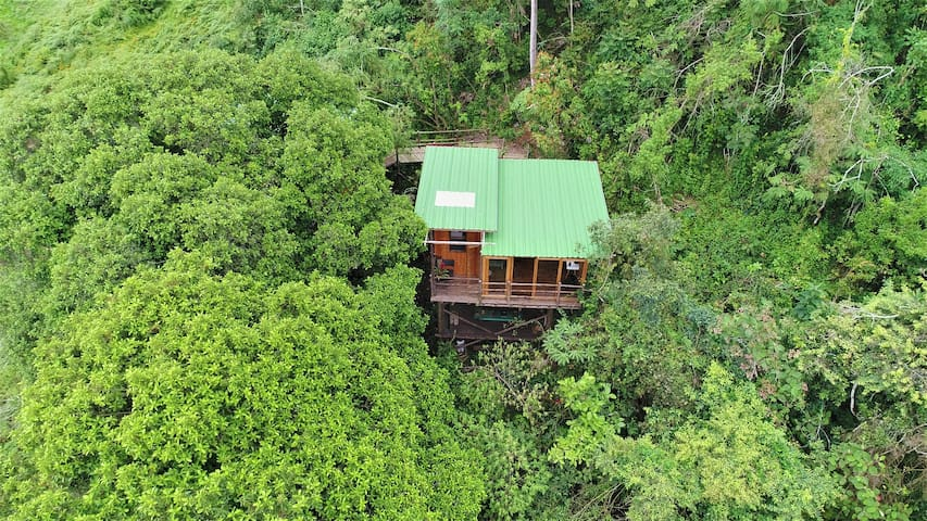 THE  TREE HOUSE TO 40 MINUTES FROM  BOGOTA