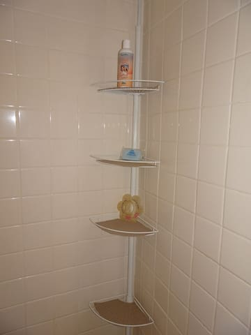 inside of shower stall; shower caddy for toiletries; I have more inside the medicine cabinet