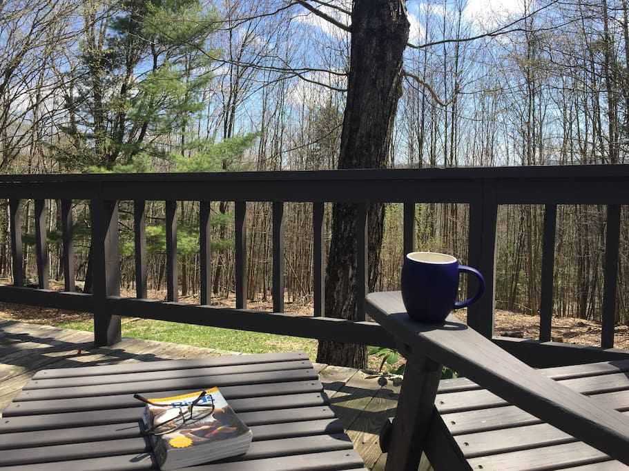 almost always a great day for a cup and a read on the deck.