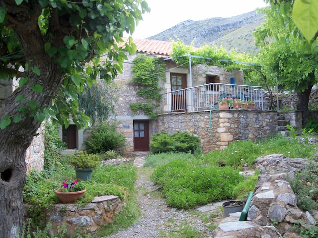 charming village house - Pedino