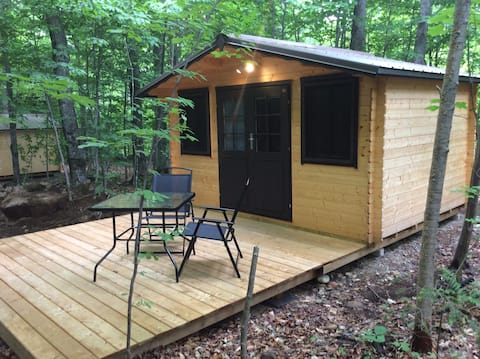 Camping Cabin in the Woods near Algonquin Park