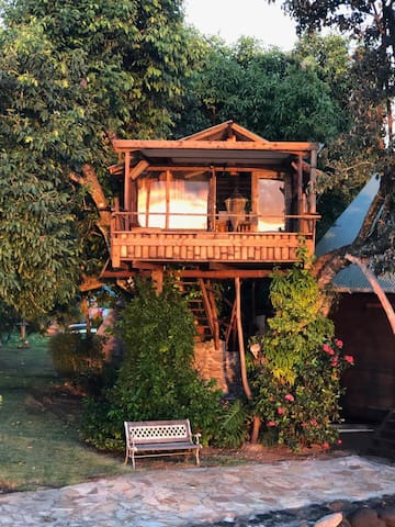 Tree house on Vairao lagoon.