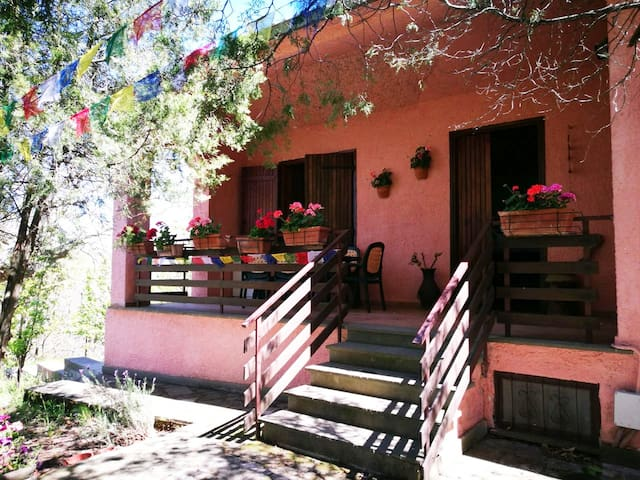 Casetta nel bosco San Martino al Cimino (VT) - San Martino Al Cimino - Prázdninový dům