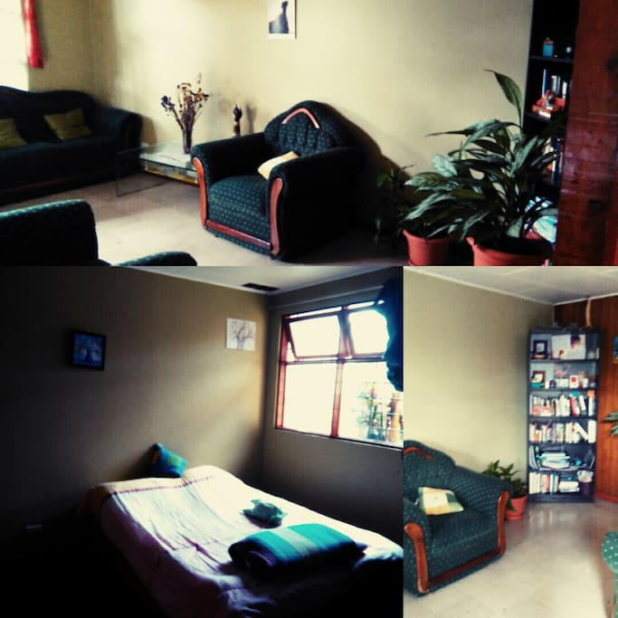 Habitación Iluminada y sala de estar con biblioteca