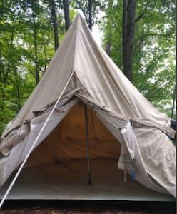 The Mossy Corner Tents (B)