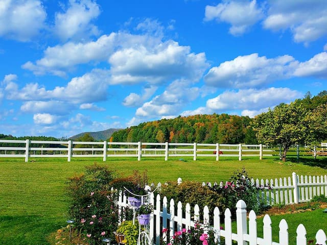 Near Damascus, On Private, Pristine Horse Farm! - Laurel Bloomery - House