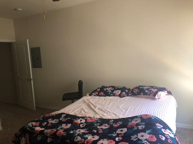 Single bed room apartment availble with hall