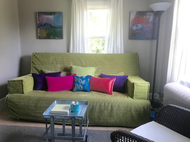 Small living room has a futon sleeper sofa - queen size