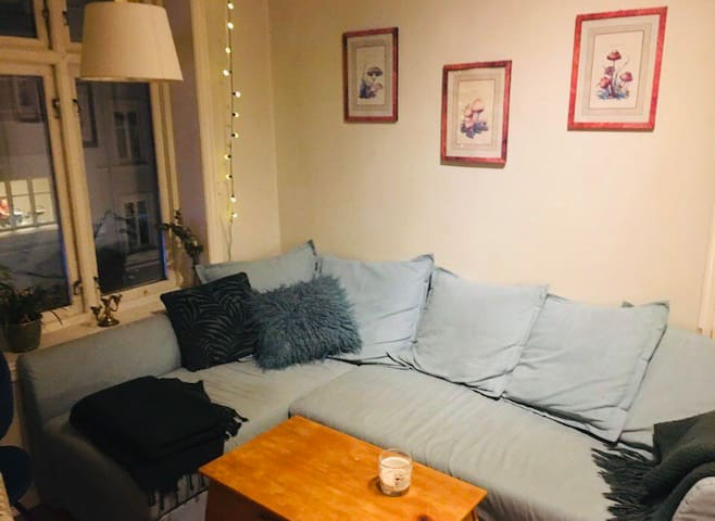 Very nice bedroom available in 4 bedroom apartment
