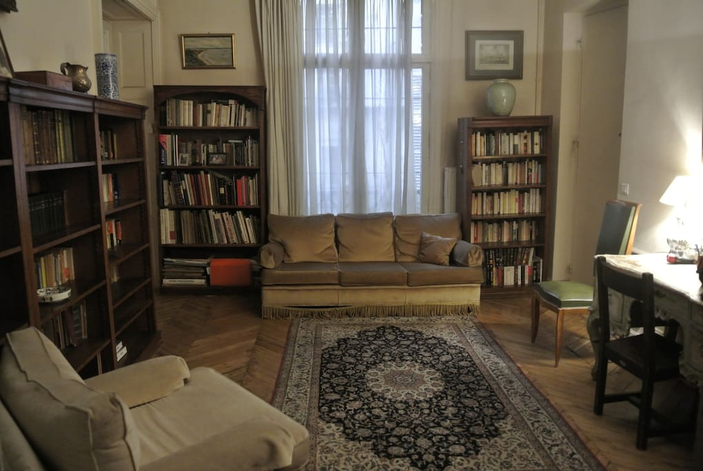 Very spacious (18 M2) Entry with desk, sofa, armchair and old libraries