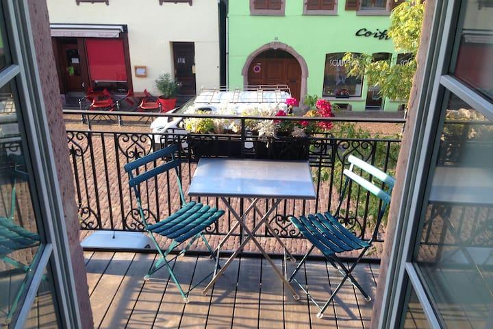 2 bedrooom flat in Kaysersberg - Kaysersberg - Wohnung