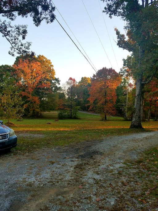 You want to stay at Getaway Cottage in the Fall the colors are aming taken yesterday