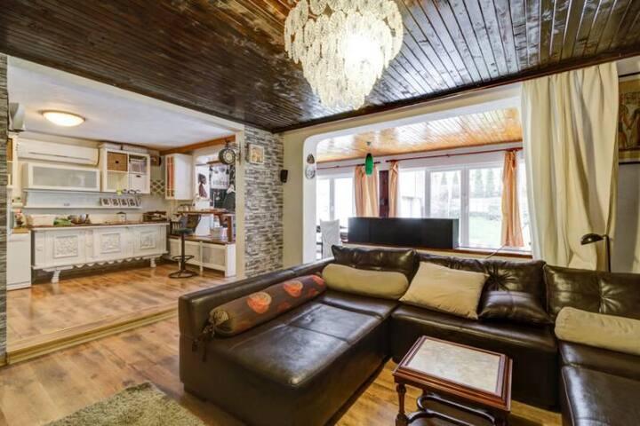Boyana's Den, Apartment at foot of mountain