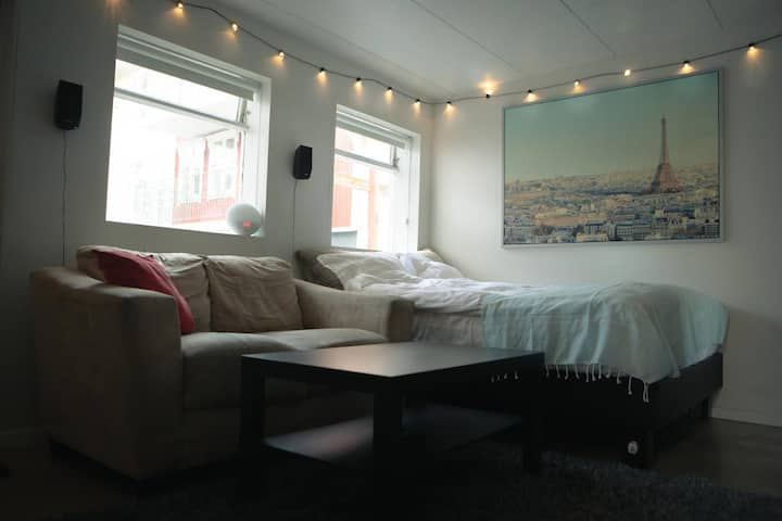 Cozy Garage-Apartment in the Heart of Reykjavik