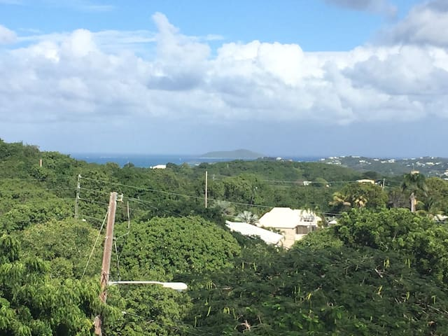 1BR- Spectacular Buck Island View! - Christiansted - House