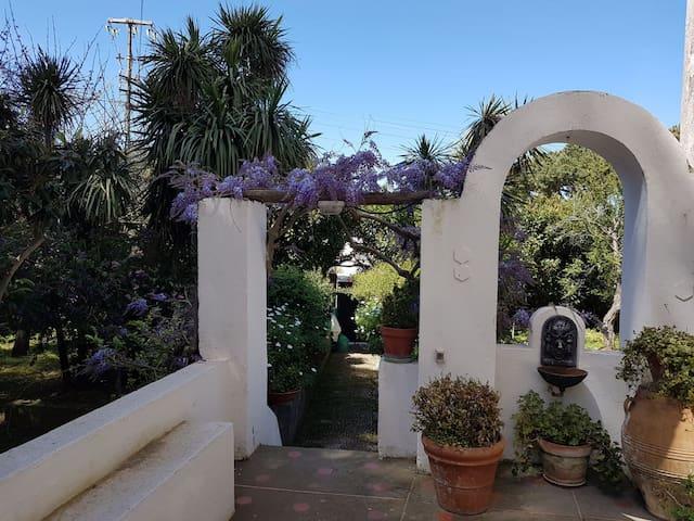 Deliziosa piccola casa con giardino