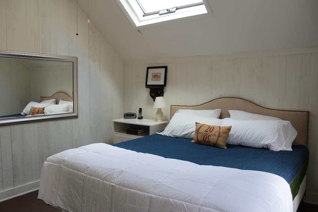 Master bedroom. King bed. Skylight and large window.