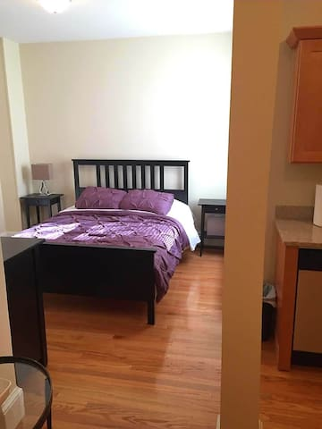 Gorgeously Renovated Allston Studio - With WI-FI!! - Boston
