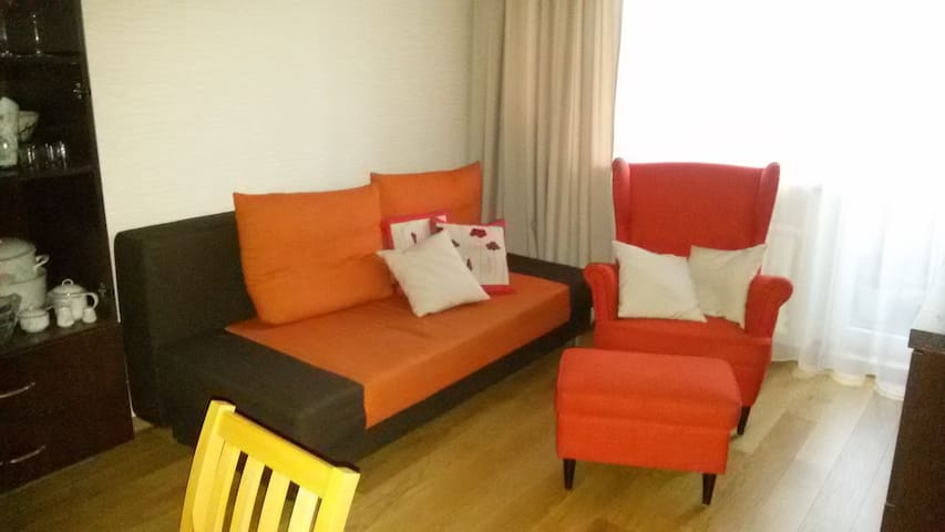 Cozy room to stay, close to center. - Vilnius - Appartement