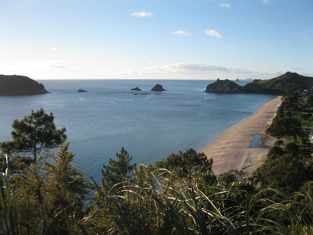 Hahei-lujah - near Cathedral Cove