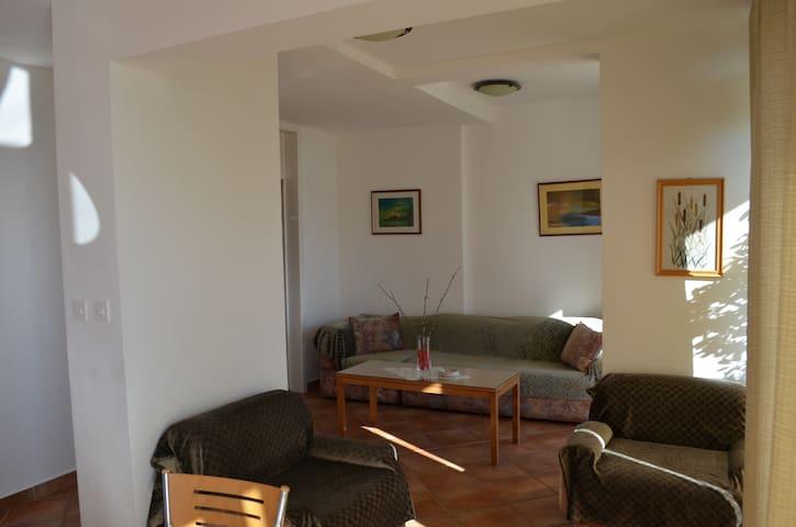Apartment Davor balcony seaview