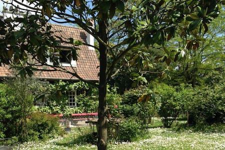 """Charmant """"cottage"""" à Perthes-en-Gâtinais - Perthes"""