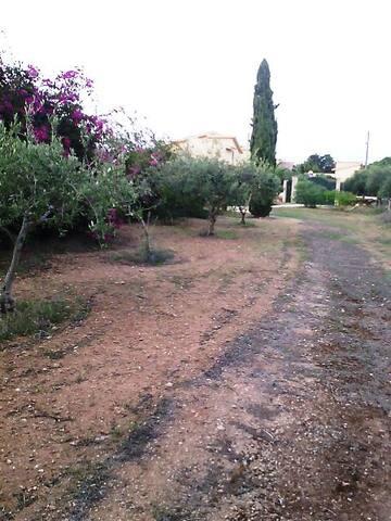 Villa Alba - Marsala - Cabane