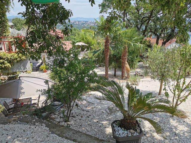 Meditranean garden