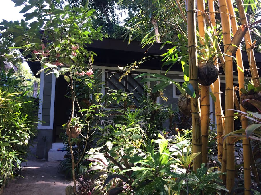 The bungalow is surrounded by lots of plants and shadowed by palm trees.