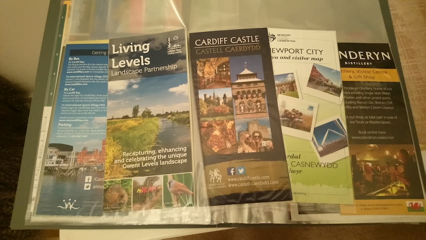 selection of maps and leaflets  places to visit in and around Newport / takeaway menus
