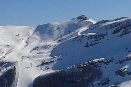 Bilocale sulle piste della Val di Luce