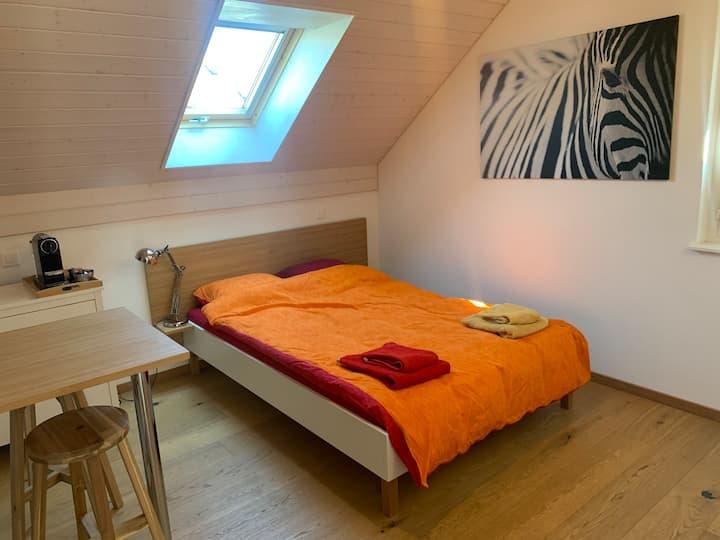 Bedroom with it's own bathroom in Trélex (Nyon)