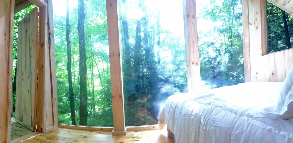 Enjoy this east facing view with beautiful light filtered through the leaves. (curtains are available)