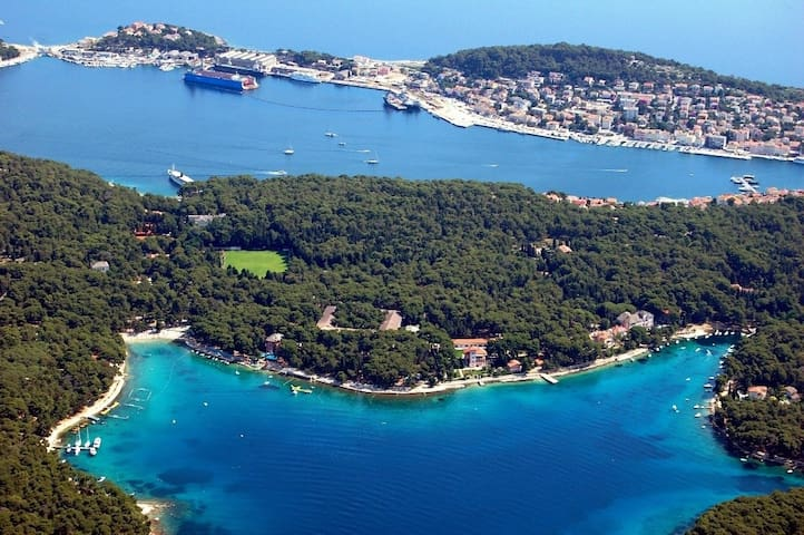 Cosy studio app with seaview terrace and grill - Mali Lošinj - Daire