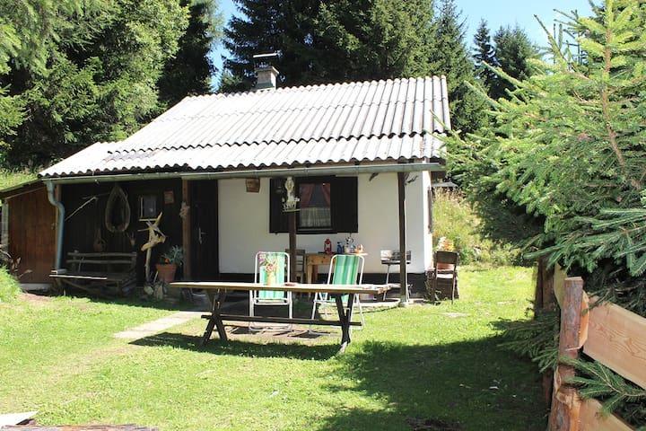Ferienhütte Wenzel - Murau - Hus